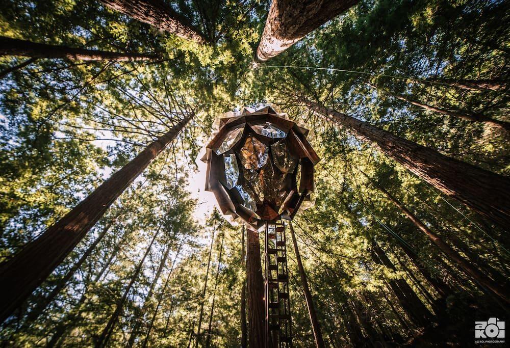 Dom na drzewie w kształcie szyszki