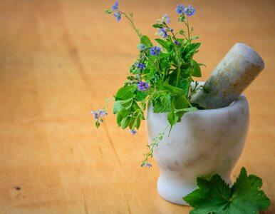 Które zioła najskuteczniej łagodzą objawy menopauzy?