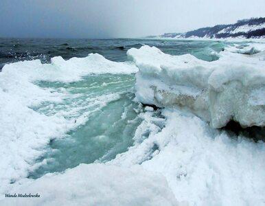 Zima wraca. Zobacz niezwykłe zdjęcia!