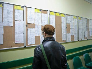 Nowe dane nt. bezrobocia. Polska poniżej średniej UE, wyprzedzamy...