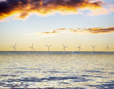 Nawet 34 tys. nowych miejsc pracy nad Bałtykiem. Powód? Energetyka wiatrowa