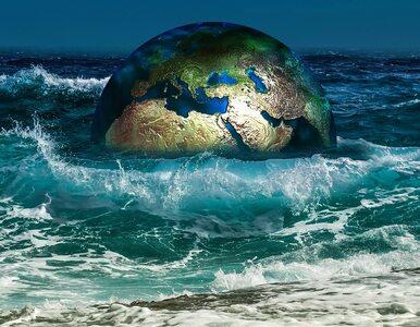Trzeba radykalnie obniżyć emisję gazów cieplarnianych! Dramatyczny apel...