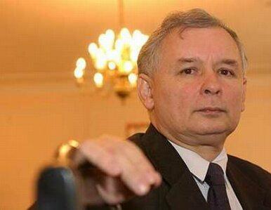 Kaczyński: Polonia powinna być reprezentowana w Senacie