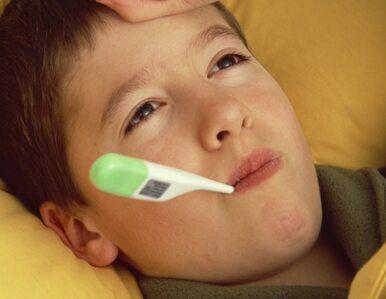 Indonezja: ptasia grypa znów atakuje