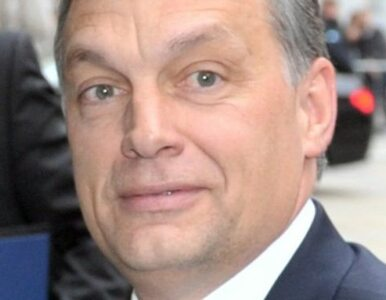 """""""Pomożemy Węgrom, żeby nie było za ostro. Orban niech zbija deficyt"""""""