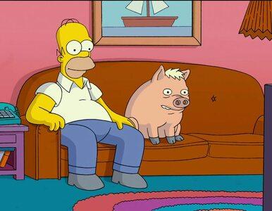 """Nie żyje producent """"Ricka i Morty'ego"""" oraz """"Simpsonów"""". Miał 54 lata"""