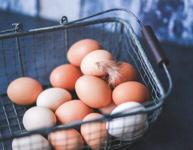 Czy jajka powinno się przechowywać w lodówce?