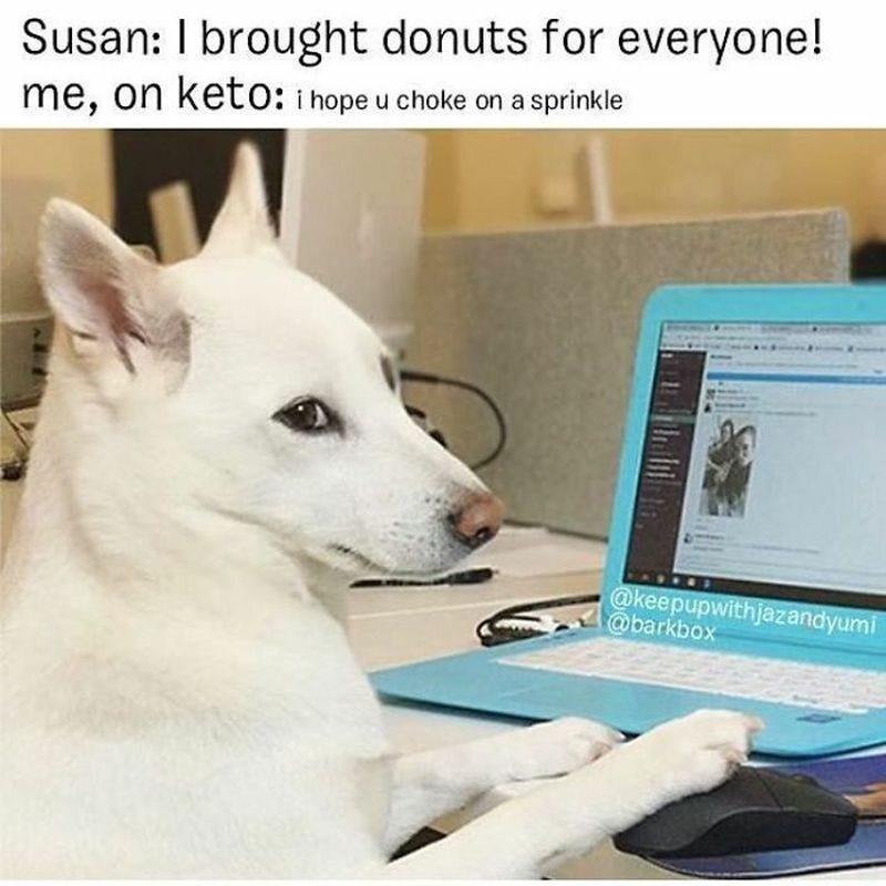 Susan: Przyniosłam pączki dla wszystkich! Ja, na diecie: Obyś się zadławiła