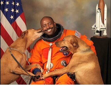 Astronauta i jego psy hitem internetu