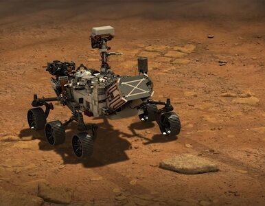 NA ŻYWO: NASA potwierdza. Łazik Perseverance wylądował na Marsie!