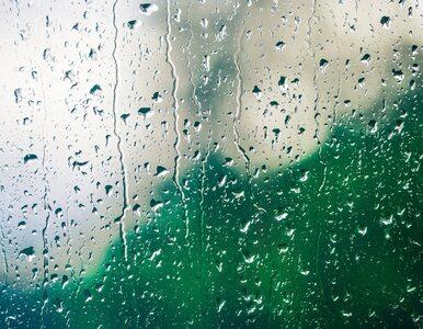Deszczowy koniec majówki. W niedzielę najcieplej będzie na Dolnym Śląsku