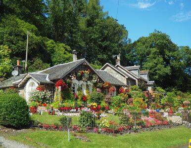 Apel botanika: trzeba zrobić wszystko, by utrzymać wodę w ogrodzie