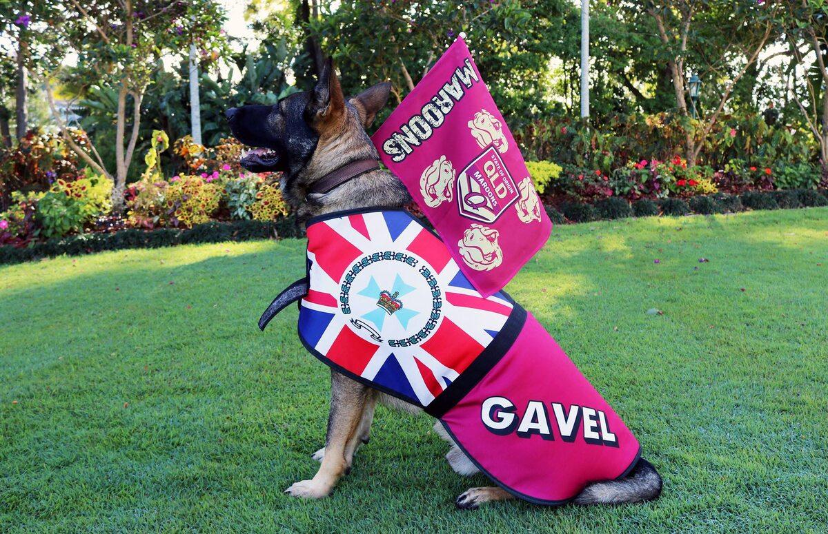 Gavel na służbie u gubernatora Queensland