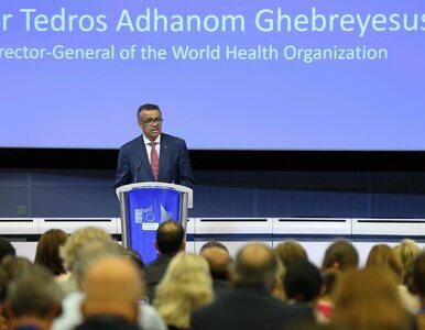 """""""Próba solidarności"""". WHO wciąż szuka najlepszej strategii na koronawirusa"""