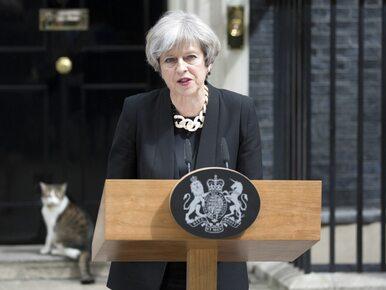 Theresa May chce międzynarodowego porozumienia w sprawie monitorowania...