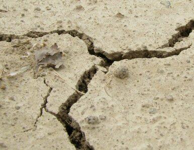 Kalifornia: Najsilniejsze trzęsienie ziemi od 25 lat. Ponad 100 rannych