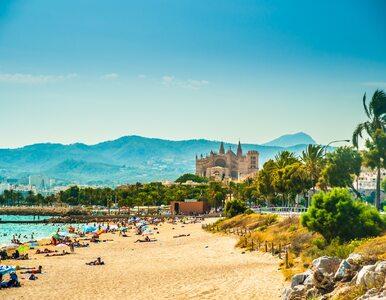 Inwazja pijanych turystów na Majorkę. Wyspa ma poważny problem, policja...