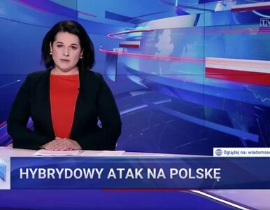 """Pedofilskie i zoofilskie zdjęcia w """"Wiadomościach"""" TVP. Jak sprawę..."""