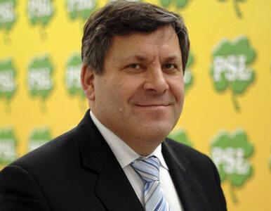 Piechociński: PSL nie jest partią dyktatorską