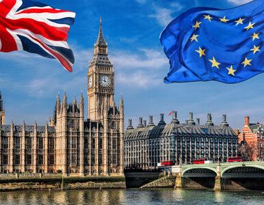 Znamy datę oficjalnego rozpoczęcia Brexitu. To już w tym miesiącu