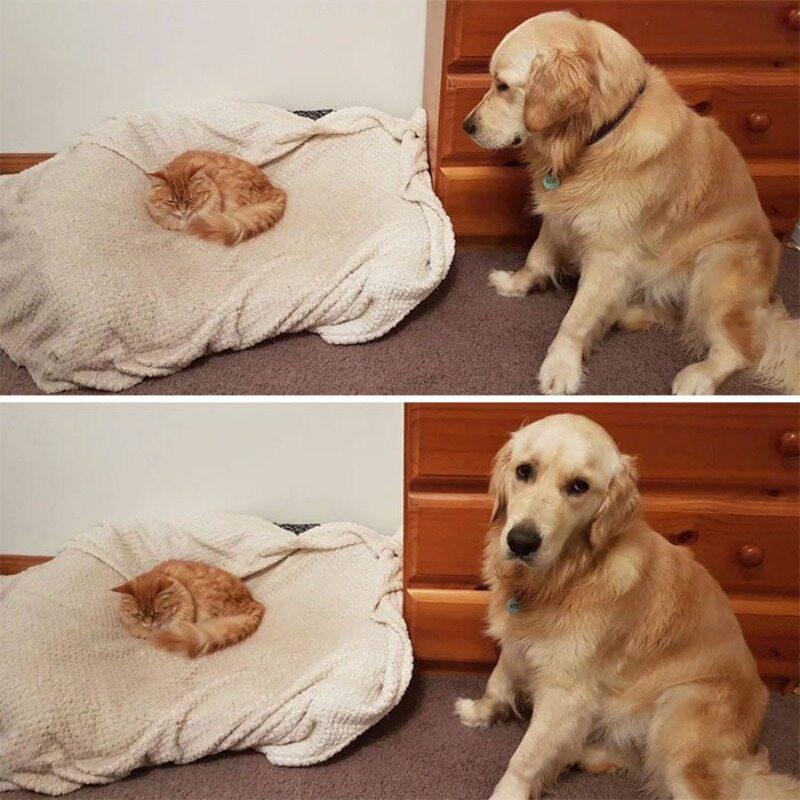 Gdzie mam spać?