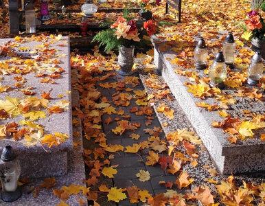 Lipno. Izolatorium dla pacjentów z COVID-19... na cmentarzu