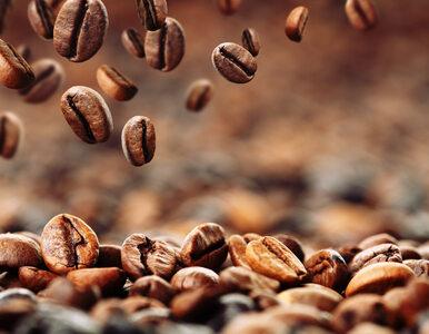 Lewatywa z kawy – kto może ją wykonać?