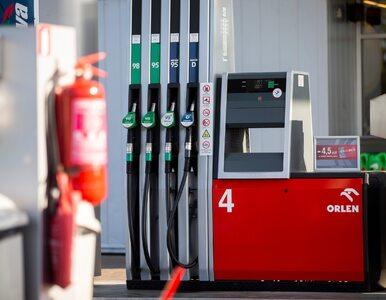"""Stacje benzynowe bez klasycznego paliwa? """"To możliwe za kilka lub..."""