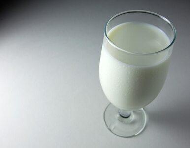 Cierpisz na nadciśnienie? Pij mleko