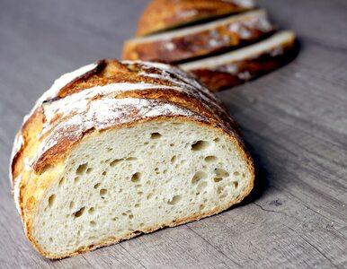 Czy można przedawkować chleb? Skutki uboczne, o których mogłeś nie wiedzieć