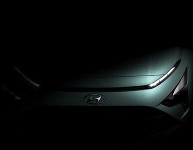Hyundai i Kia nie zrobią auta z firmą Apple. Ich akcje runęły w dół