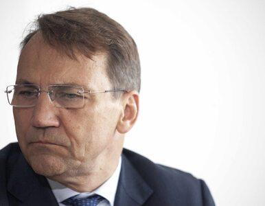 Radosław Sikorski ostro: Powiem więcej. Gadającą małpą jest sam Kaczyński