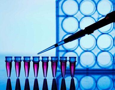 Koronawirus. Zakończono prace nad pierwszą partią leku na COVID-19....