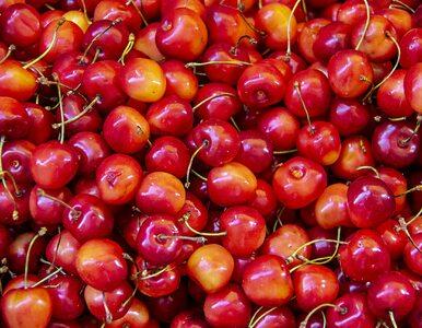 Najlepsze przepisy na dania z czereśni. Dlaczego warto po nie sięgać?