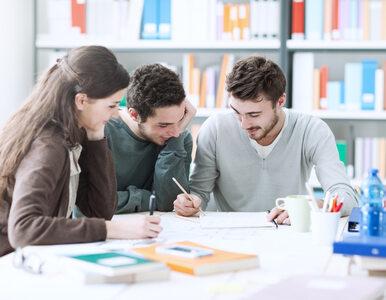 W Polsce powstaną krótkie cykle kształcenia? O stopień niżej niż licencjat