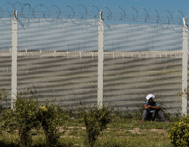 W Calais powstanie betonowy mur. Ma chronić kierowców przed napadami...