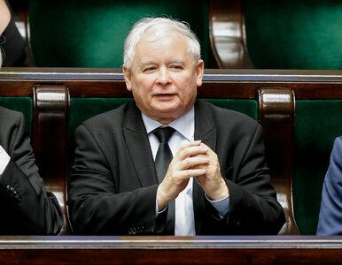 """Polityk PiS: Kaczyński świetnie wypada w serialu """"Ucho prezesa"""""""