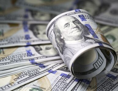Inwestorzy nabrali chęci na ryzyko. Dolar pozostaje słaby