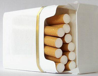 Celnicy znaleźli tort. W środku... papierosy