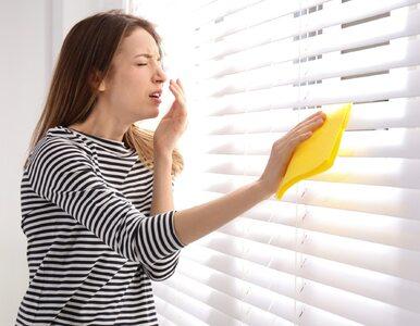Jak rozpoznać alergię na kurz?