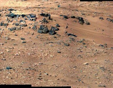 Na Marsie jest jak... na Hawajach?