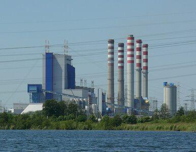 Solorz i Sołowow inwestują w elektrownię atomową w Pątnowie. Podpisano...