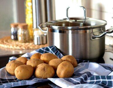 Czy kiełkujące ziemniaki są bezpieczne do spożycia?