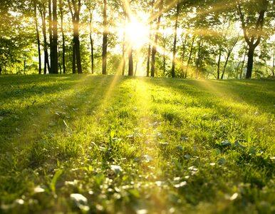 Środa będzie ciepła i pogodna. Od jutra pierwsze upały w tym roku