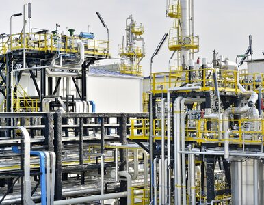 Prezes PGNiG: Przepłacaliśmy za gaz z Rosji około miliarda złotych rocznie