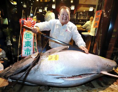 Zapłacił kilka milionów za wielkiego tuńczyka. Zdjęcie trafiło do sieci