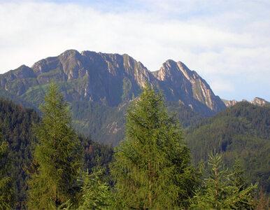Tatrzański Park Narodowy chce, by turyści posprzątali góry