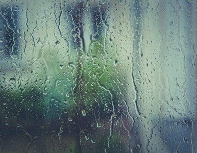 Środa z przelotnym deszczem w całym kraju. Temperatura sięgnie 19 stopni