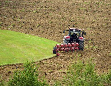 Rolnictwo jest odporne na wszystkie kryzysy