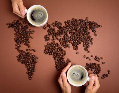 Kawa – najpopularniejszy napój świata? 10 mało znanych faktów z okazji...